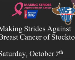 The Making Strides Against Breast Cancer Walk Is Happening Saturday October 7th!