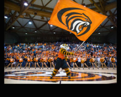 University of Pacific Basketball is in Full Swing! It's Men & Womens NCAA Division I Basketball at the A.G. Spanos Center!