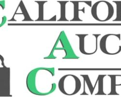 California Auction Company Police Seizure, Antiques and Collectibles