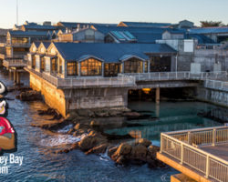 We've Got Monterey Bay Aquarium Tickets